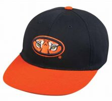 COL-275-AUBURN TIGERS-Youth