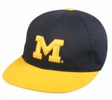 COL-275-MICHIGAN WOLVERINES-Adult