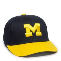 COL-275-MICHIGAN WOLVERINES-Youth