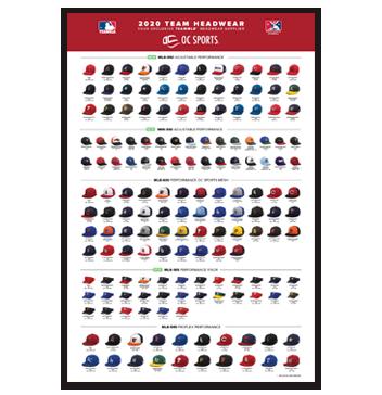 2020 MLB Team Poster